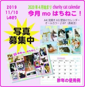 Photo_20191106223201